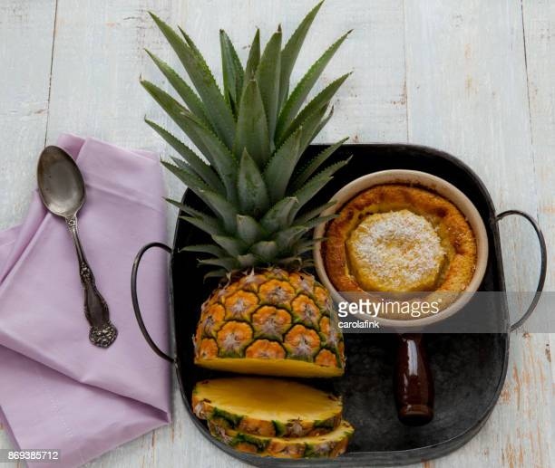 pineapple - carolafink stock photos and pictures