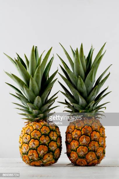 pineapple - carolafink stock pictures, royalty-free photos & images