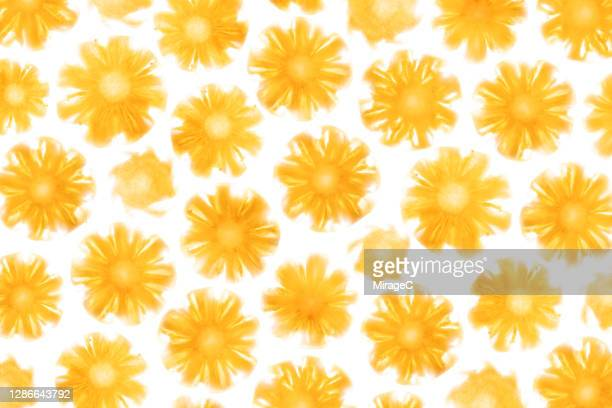 pineapple slices back lit pattern - translucent stock pictures, royalty-free photos & images