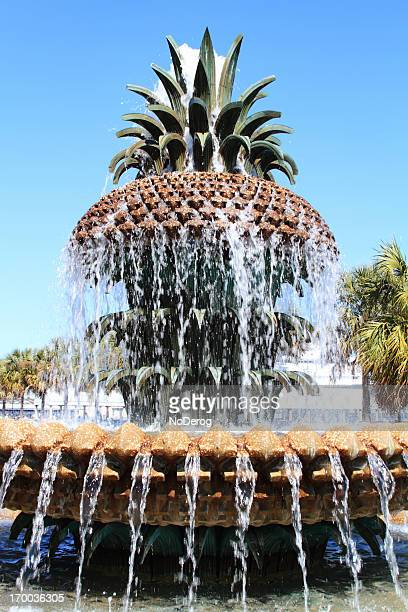 Pineapple water fountain in Charleston SC