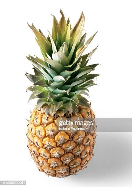 Pineapple, white background