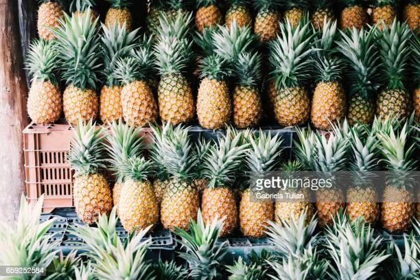 Pineapples for sale in the back of a truck, Mexico