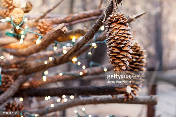 Pinecones hanging with lights