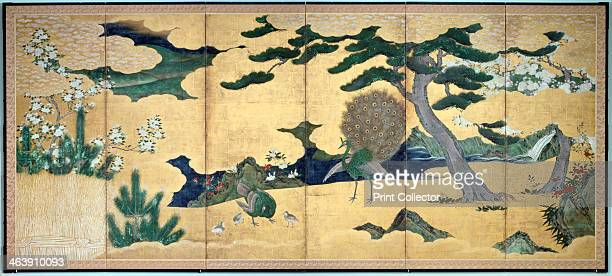'Pines and Peacocks' Japanese Edo period early 17th century