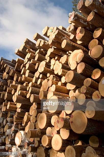 pinetree logs