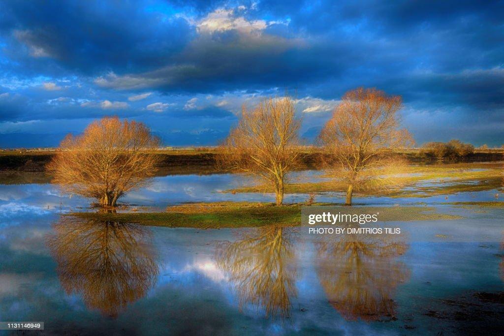 Pinios river floods colors 7 : Stock Photo