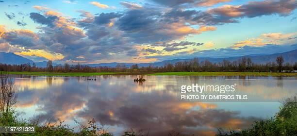 pinios river overflowed panorama - dimitrios tilis stock pictures, royalty-free photos & images