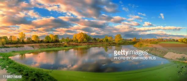 pinios river - dimitrios tilis stock pictures, royalty-free photos & images