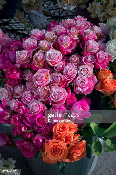 pink and orange roses on a flower stand. - emreturanphoto stock pictures, royalty-free photos & images