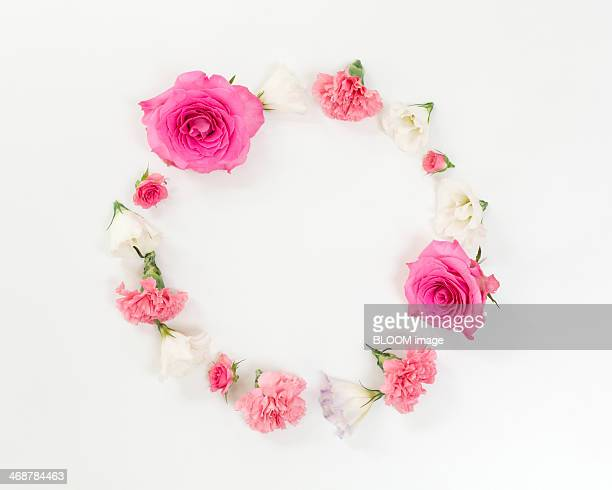Pink and white flowers forming circle
