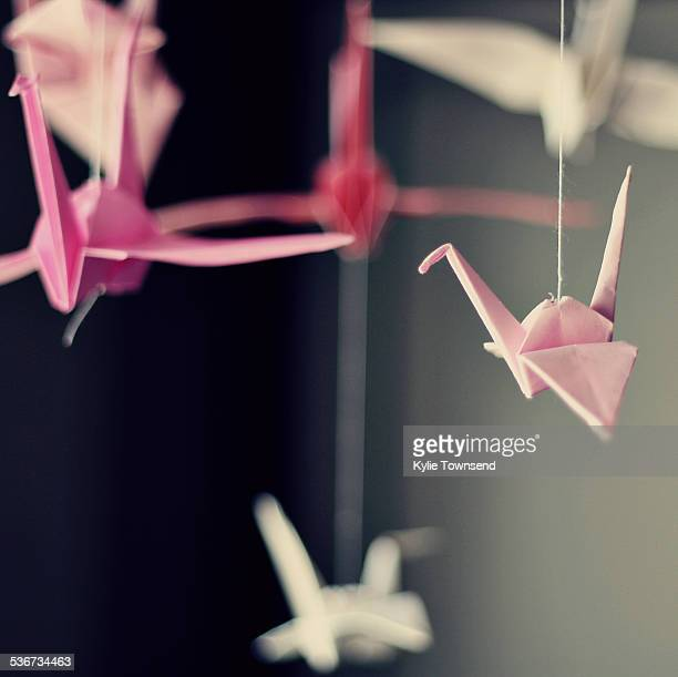 Pink and White origami paper cranes hanging in air