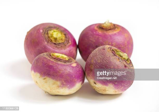 pink and white turnips - fruta stock photos and pictures