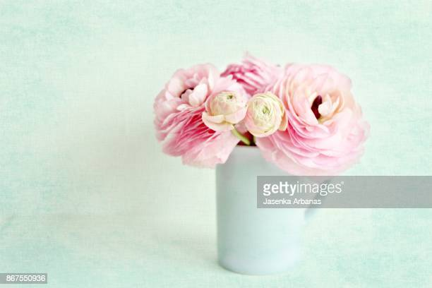 Pink anemone in a blue cup