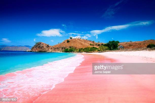 pink beach, komodo island - indonesia photos stock photos and pictures