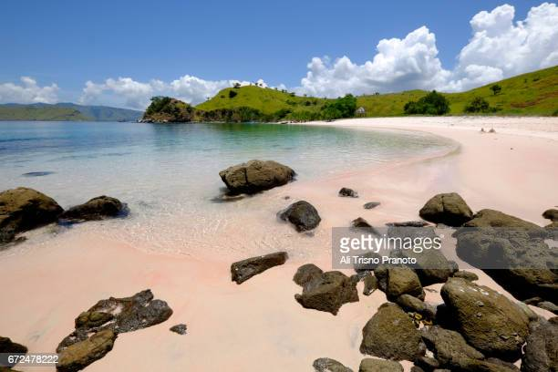 pink beach, komodo national park, flores. east nusa tenggara, indonesia. - east nusa tenggara stock pictures, royalty-free photos & images