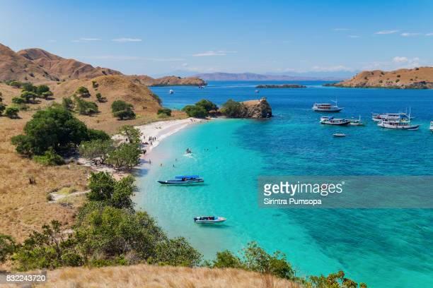 Pink Beach of the Komodo Islands Flores Sea, Nusa Tenggara, Labuan Bajo Indonesia