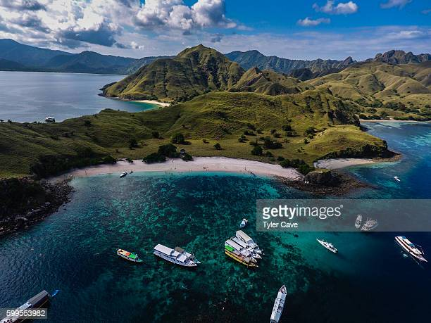 pink beach - komodo island stock photos and pictures