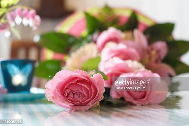 pink colored roses in a bouquet of flowers are on the table. light blue elements are out of focus. - pingst bildbanksfoton och bilder