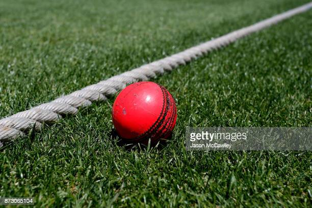 Pink cricket ball is seen prior to day four of the Women's Test match between Australia and England at North Sydney Oval on November 12, 2017 in...