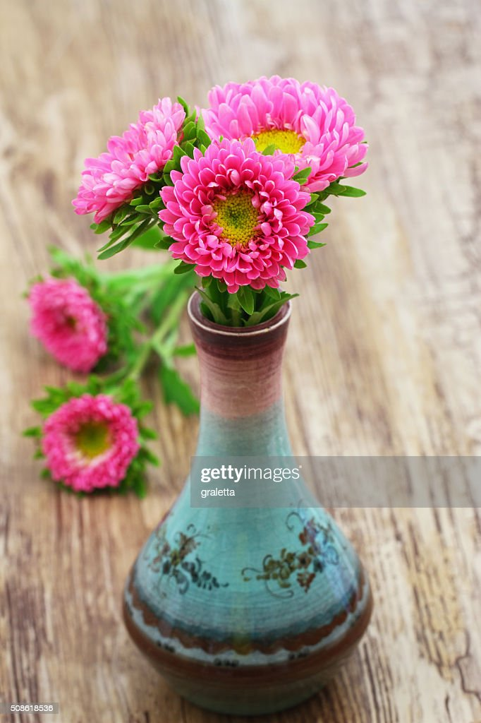 Pink daisies in fine porcelain vase with copy space : Stock Photo