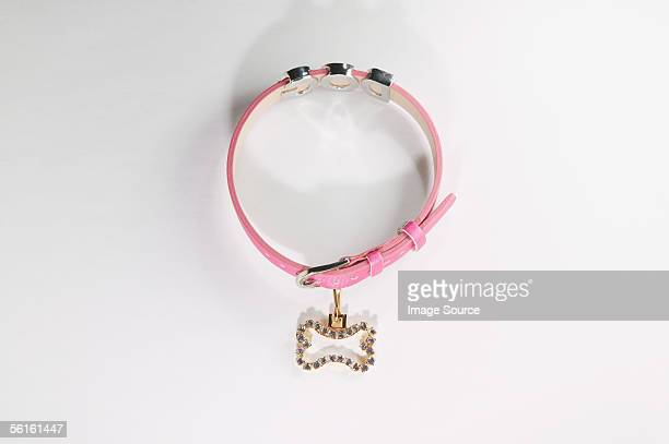 pink dog collar - collar stock pictures, royalty-free photos & images