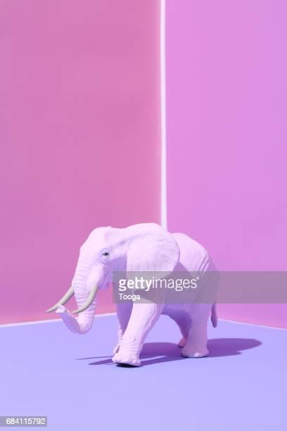 pink elephant - surreal - fotografias e filmes do acervo
