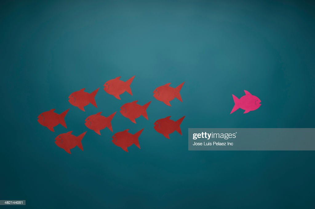 Pink fish swimming in opposite direction from red fish : Stock Photo