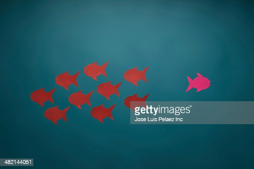 pink fish swimming in opposite direction from red fish stock photo getty images. Black Bedroom Furniture Sets. Home Design Ideas