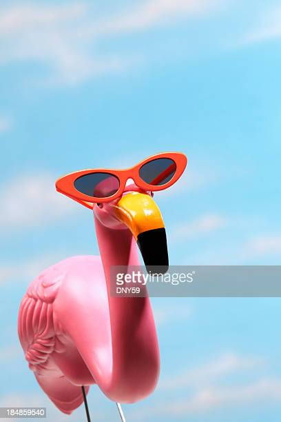 Pink flamingo wearing sunglasses against blue sky