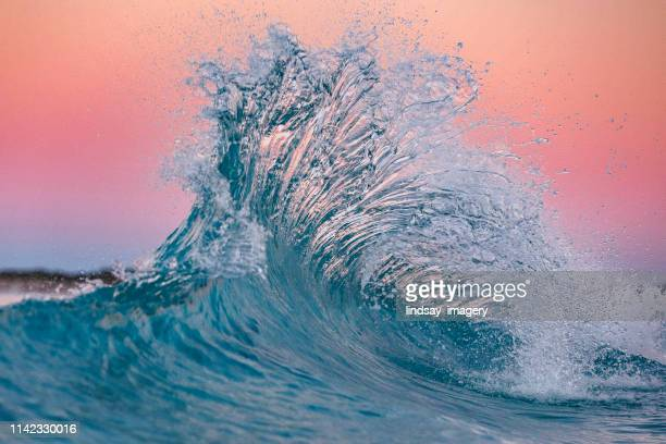 pink flare in the ocean - seascape stock pictures, royalty-free photos & images