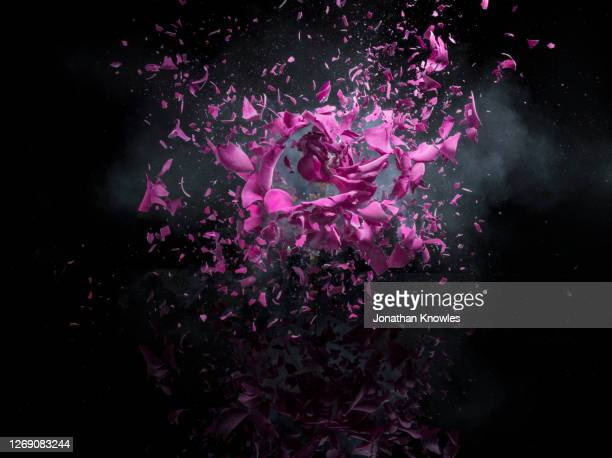 pink flower exploding - destruction stock pictures, royalty-free photos & images
