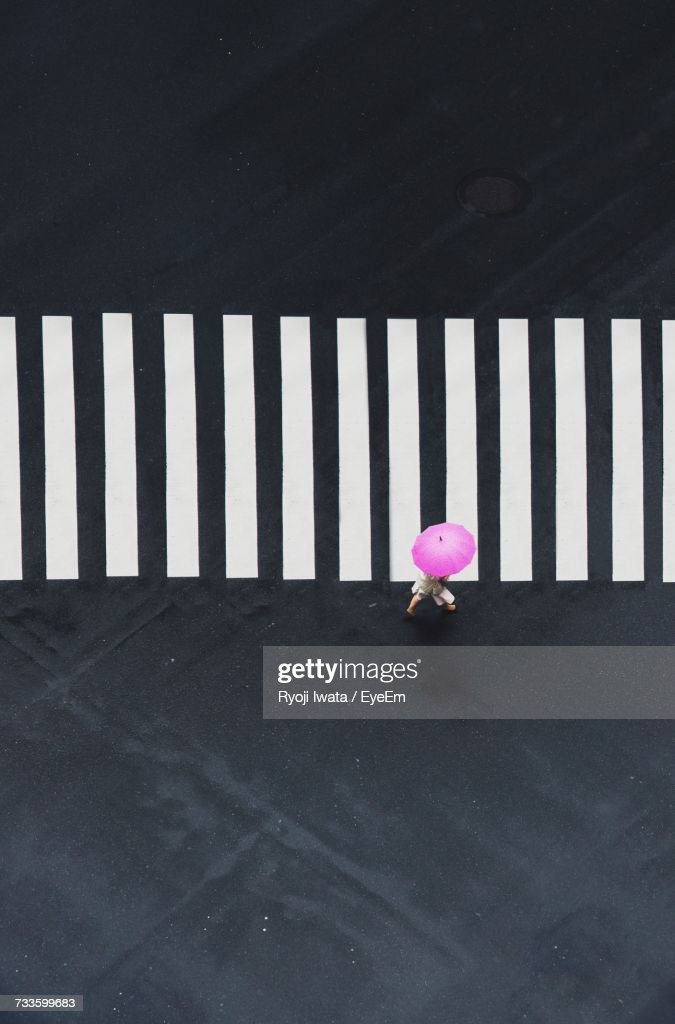Pink Flowers Against Wall : Stock Photo