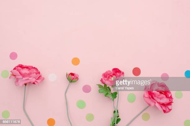 pink flowers in a row, confetti and pink background