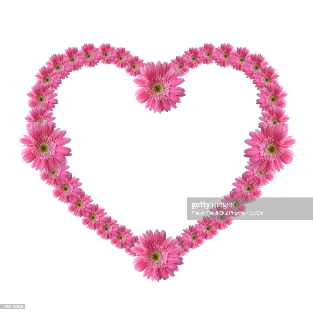 Pink Flowers In Heart Shape Against White Background Stock Photo