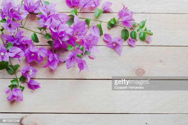 Pink flowers on wooden table