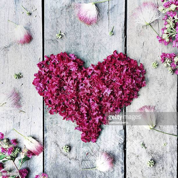 pink heart made from crepe myrtle flowers - crepe myrtle tree stock pictures, royalty-free photos & images