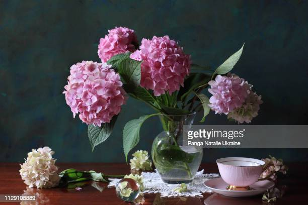 pink hortensia bouquet with porcelain cup and crystal sphere - florescencia fotografías e imágenes de stock