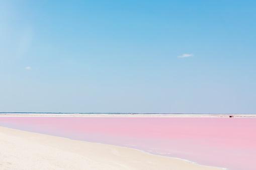 Pink lake, Las Coloradas, Mexico - gettyimageskorea