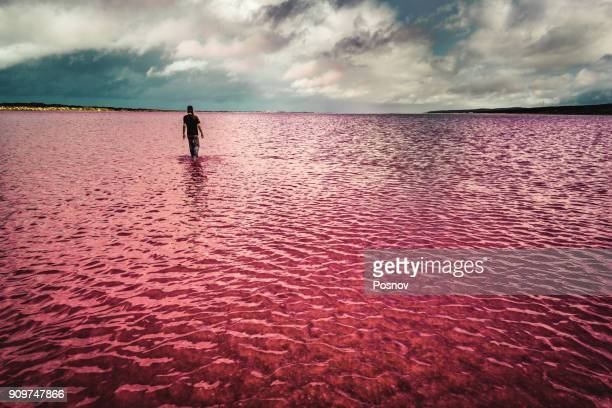 Pink Lake of Hutt Lagoon