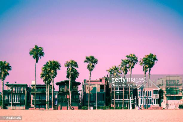 pink los angeles sunset with palm trees and beach houses - california stock pictures, royalty-free photos & images