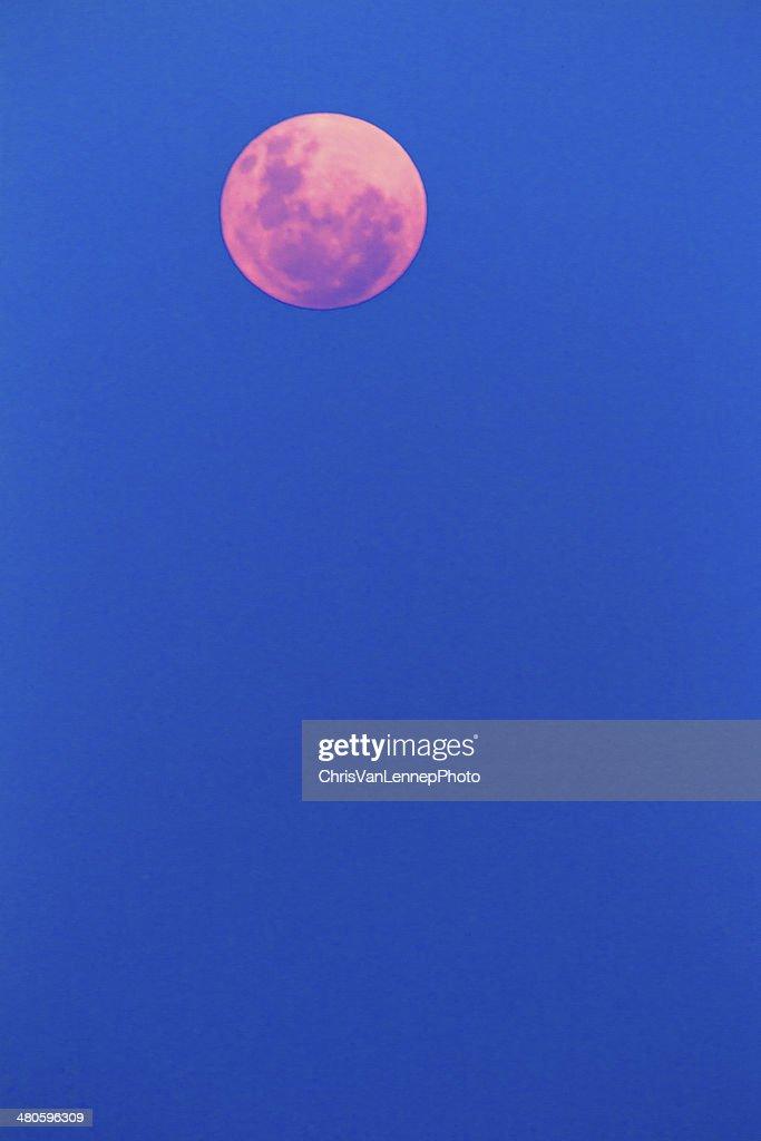 Pink Moon : Stock Photo
