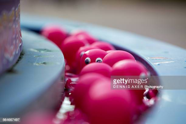 Pink Octopi in line at carnival game