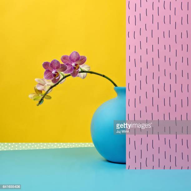 pink orchid in blue vase - orchid flower stock pictures, royalty-free photos & images