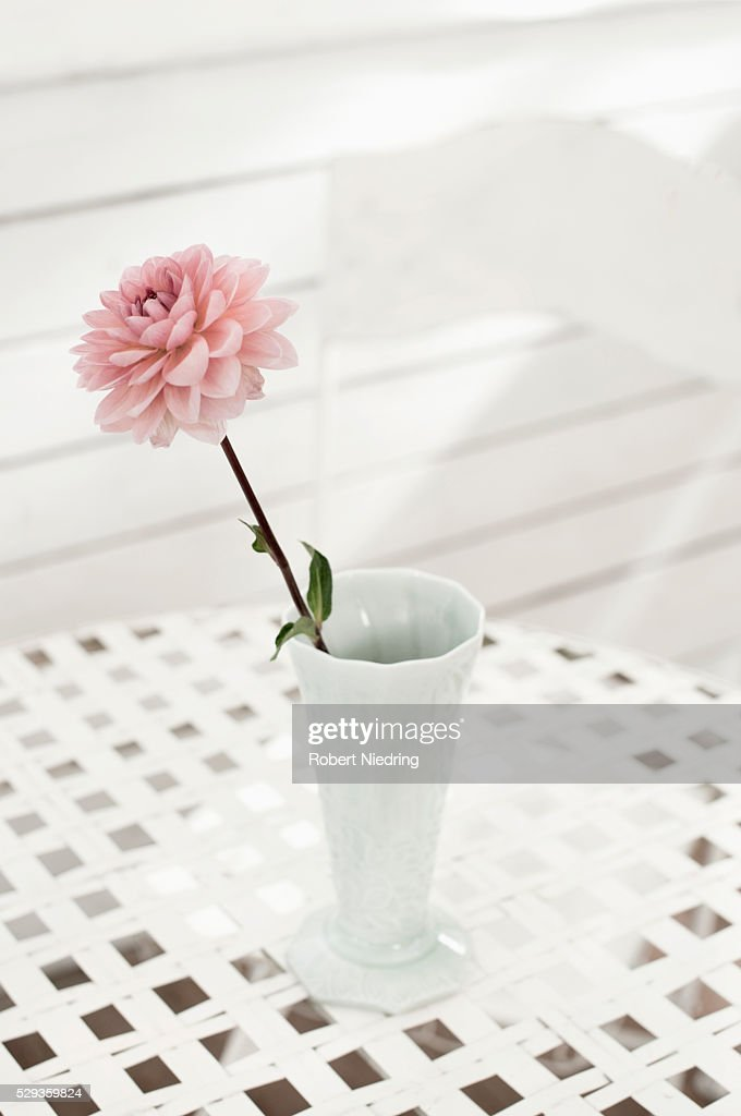 Pink Peony Flower In Vase On Table At Glass House Bavaria Germany