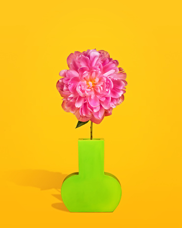 Pink Peony in a Green Vase - gettyimageskorea