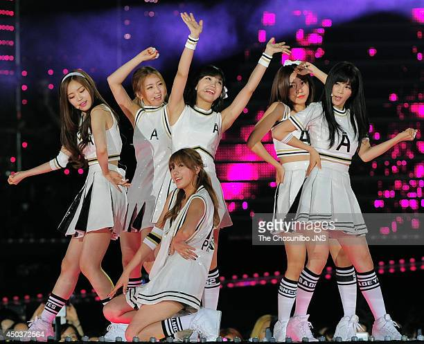 A pink perform onstage during the 2014 Dream Concert at Seoul World Cup Stadium on June 7 2014 in Seoul South Korea