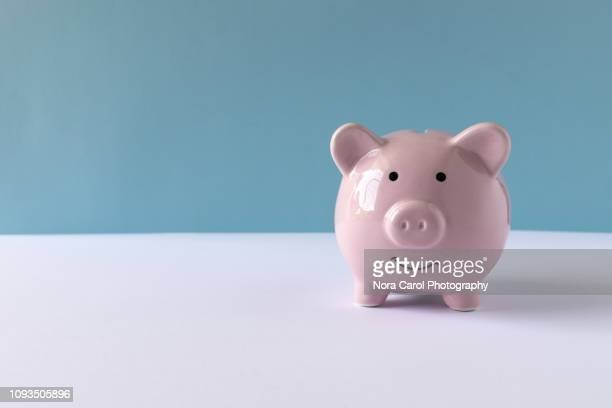 pink piggy bank - piggy bank stock pictures, royalty-free photos & images