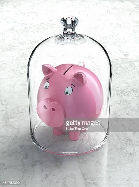 Pink piggy bank under a glass bell jar