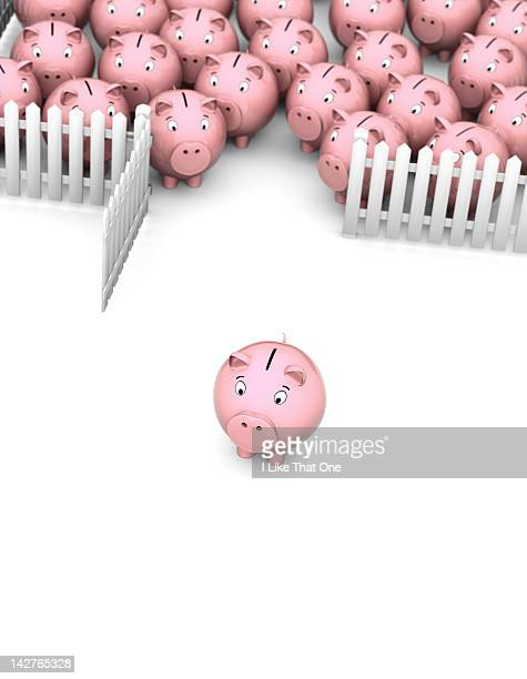 Pink Piggy Bank walking away from a picket fence