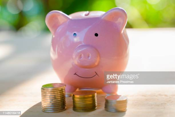 pink piggy bank with some coins on the brown wooden table with the green background describes the concept of business, finance and money saving - inexpensive stock photos and pictures